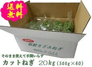 阿波の新鮮カットねぎ 20kg(500g×40袋)業務用 送料無料 徳島県産産地直送 クール便