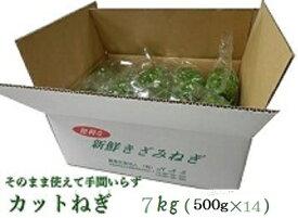 カットねぎ7kg (500g×14)業務用徳島県産