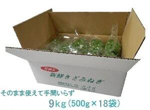 カットねぎ9kg (500g×18)徳島県産 業務用