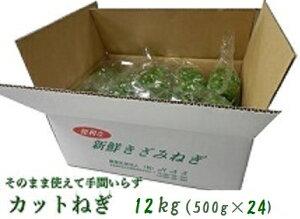 阿波の新鮮カットねぎ 12kg(500g×24) 業務用 ネギ 葱 薬味 国産 徳島県産 自社産 産地直送 冷蔵便 送料別