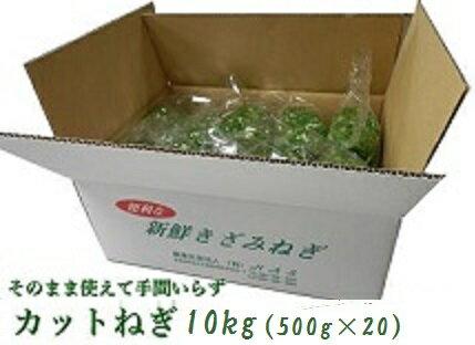 きざみネギ10kg(500g×20)