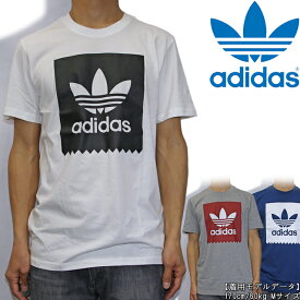 adidas アディダス Blackbird Logo Fill Tee Tシャツ 半袖 スケートボード スケボー