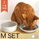 食器 猫 ヘルスウォーター ボウル M フードボウル M セット