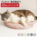 マット 猫 ベッド ぽかぽかマット POCKET winter 日本製