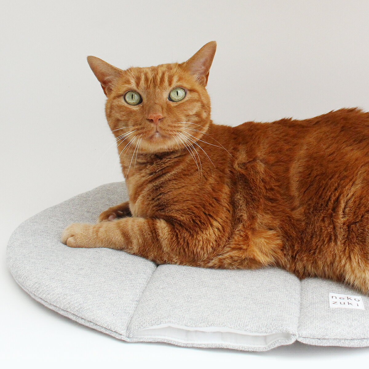 マット ぽかぽかマットPOCKET 猫 ベッド winter OVAL