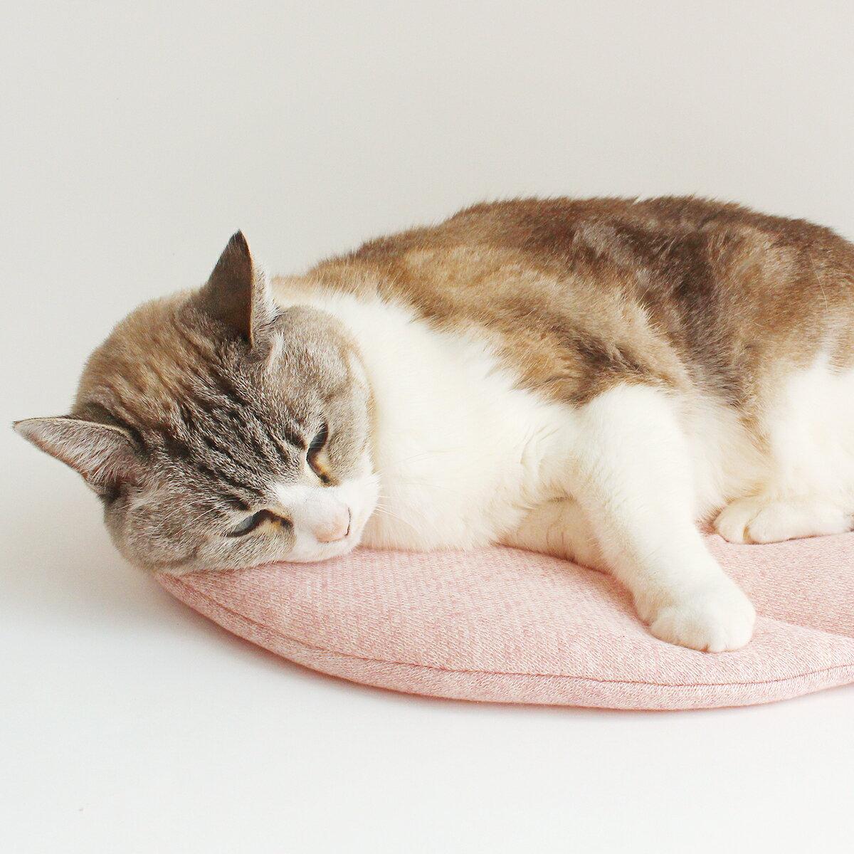 マット ぽかぽかマットPOCKET 猫 ベッド winter ROUND