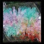 【ポイント10倍】ニック・ムーン/サーカス・ラヴ[SICX-99]【発売日】2018/4/11【CD】