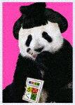 【ポイント10倍】桑田佳祐/がらくたライブ (初回限定盤/364分)[VIZL-1900]【発売日】2018/4/4【Blu-rayDisc】