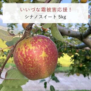 りんご 長野県飯綱町産 シナノスイート 訳あり 5kg 本州限定 送料無料 【いいづな霜被害応援!】