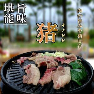 猪肉 選べるセット 200g × 3パック 計600g 肩 ロース バラ肉 モモ肉 スライス (クール便)勇田薬草園 ゆうだやくそうえん