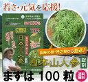 健康 サプリ エイジングケア 美容 ダイエット【送料無料】日本山人参 錠剤 ヒュウガトウキ