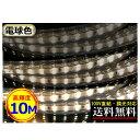 LEDテープライト 調光可能 100V直結 10M 高輝度 明るい 電球色 間接照明 二列式 インテリア CY-TPDW10M