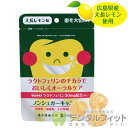 ラクトフェリンのチカラ 大長レモン味 オーラルケアキャンディ(ラクトフェリン30mg配合)シュガーレスキャンディ 1袋…