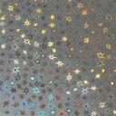ホログラムシート スター選べる10色(シールタイプ)