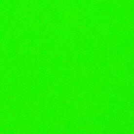 蛍光紙 蛍光グリーン(シールタイプ)目立つ!! 舞台装飾/スタジオ装飾/店内装飾/室内装飾/パーティー装飾/メッセージうちわ/応援うちわ/ファンサうちわ/手作りうちわ/メニューボード/コンサートうちわ/応援ボード