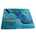 〈海遊館〉チョコサンド-93130[アK]kaiyu【RCP】_Y190610100026