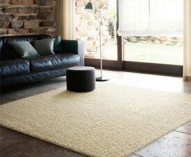 【送料無料】シャギーラグ▼スミトロンプレシャス 140×200cm▼ スミノエ  ビッグサイズラグ BIG SIZE RUG イージーオーダーラグ すみのえ 絨毯 じゅうたん カーペット