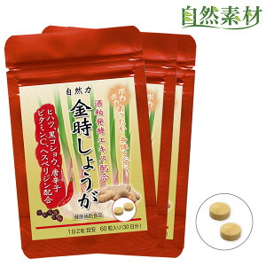 凝縮金時しょうが 3袋(約3ヶ月分)酒粕発酵エキス ヒハツ 唐辛子を配合 じんわりポカポカで体をサポート