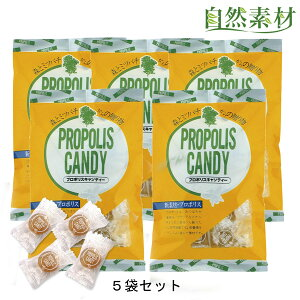 プロポリス のど飴 キャンディ 5袋セット のどの弱い方 創業40年 プロポリスにはちみつ入りの美味しいのど飴 風邪の予防にのどをいたわる飴 大日ヘルシーフーズ直販