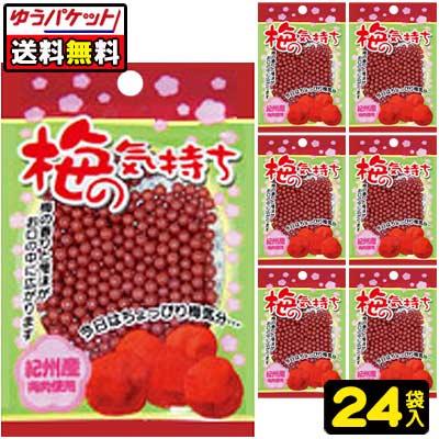 【ゆうパケット便】【送料無料】【オリオン製菓】梅の気持ちtimes;24袋