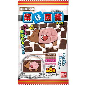 【バンダイキャンディ】100円 キャラパキ 解体図鑑(14袋入)