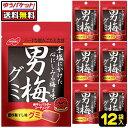 【ゆうパケット便】【送料無料】【ノーベル製菓】男梅グミ 12袋