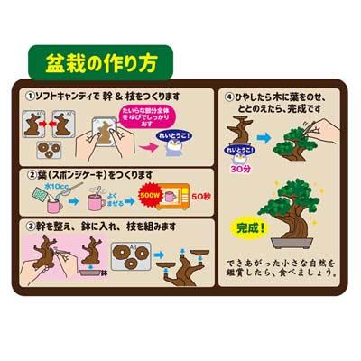 【ハート】おかしでつくる盆栽(6個入)