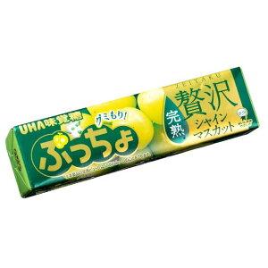 【UHA味覚糖】100円 ぷっちょスティック〈贅沢シャインマスカット〉(10個入)