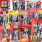 【ノーベル製菓】男梅シリーズ12点セット