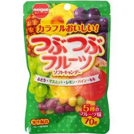 【明治チューインガム】つぶつぶフルーツソフトキャンデー70g(10袋入)