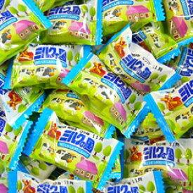 【春日井製菓】ミルクの国〈1kg〉    {徳用 大袋 業務用 つかみどり バラマキ 景品 キャンディ アメ あめ 飴}