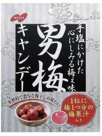 【ノーベル製菓】200円 男梅キャンディー80g(6袋入)