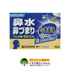 漢元ハヤオキツー 顆粒12包入り【第2類医薬品】ゆうパケット発送