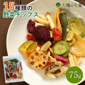 15種類の野菜チップス 75g 送料無料 野菜スナック お菓子 ハロウィン ギフト 贈り物 スナック菓子 子供 おやつ 詰め合わせ 酒の肴 おつまみ 珍味 お試し 非常食 保存食 家飲み 宅飲み
