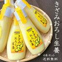 【送料無料】きざみおろし生姜100g×4本 お買い得セット 熊本県産 国産 生しょうがおろし 生姜チューブ