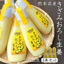 きざみ おろし生姜 100g × 3本 お買得 セット 熊本県産 《 送料無料 》【 おろししょうが しょうが チューブ 生姜 シ…