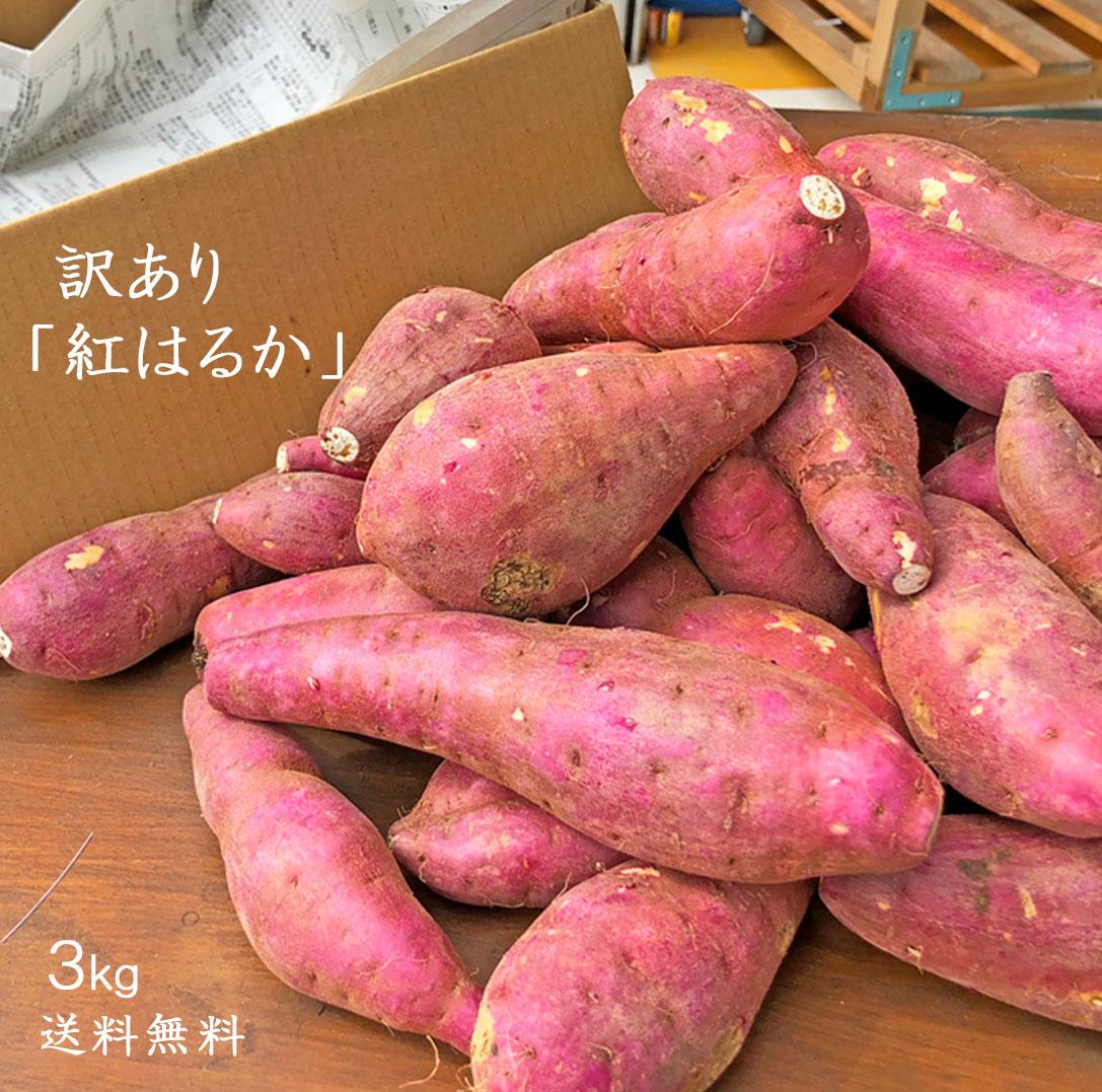 【送料無料】訳ありさつまいも3kg 熊本県産 紅はるか お買い得 数に限りがございます!!