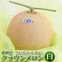 静岡県産 マスクメロン クラウンメロン 1.2kg×1玉 | 贈答 お歳暮 お年賀 内祝い 結婚祝い お見舞い お盆 お彼岸 ギ…