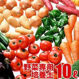 野菜の実りの培養土 10L 大郷屋オリジナルブレンド培養土 植物の土