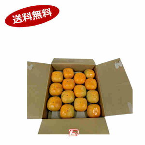 【送料無料1ケース】平種なし 柿 和歌山県 秀品 約3.5kg 2L-4L寸★北海道、沖縄のみ別途送料が必要となります