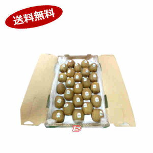 【送料無料1ケース】キウイフルーツ 約3kg 27-33玉 ニュージーランド★北海道、沖縄のみ別途送料が必要となります