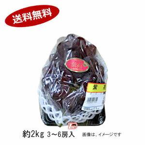 【送料無料】紫苑 しえん 葡萄 ぶどう 種なし 岡山県 秀品 約2kg 3-6房入★北海道、沖縄のみ別途送料が必要となります
