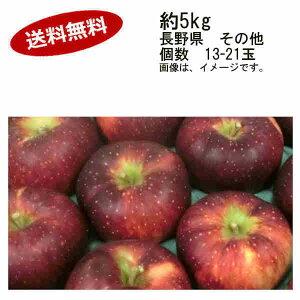 【送料無料】10月27日まで発送可能商品 秋映りんご あきばえりんご 長野県 その他 5kg 13-21玉★一部、北海道、沖縄のみ別途送料が必要となる場合があります