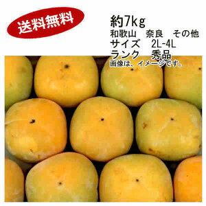 【送料無料】予約 9月末以降出荷予定 平種なし柿 和歌山県 7.5kg 24-32個 サイズ 2L-4L 秀品★一部、北海道、沖縄のみ別途送料が必要となる場合があります