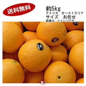 【送料無料】ネーブルオレンジ アメリカ オーストラリア 約5kg サイズ お任せ★一部、北海道、沖縄のみ別途送料が必要となる場合があります