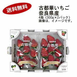 【送料無料】古都華 いちご 4箱セット (300g×2パック) 奈良県産★北海道、沖縄のみ別途送料が必要となります