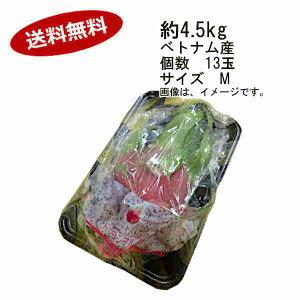 【送料無料】ドラゴンフルーツ 白 ベトナム産 約4.5kg 13玉 サイズ M★一部、北海道、沖縄のみ別途送料が必要となる場合があります