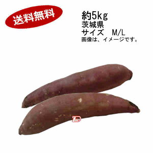 【送料無料】紅はるか さつまいも 約5kg 茨城県産 サイズ M/L★一部、北海道、沖縄のみ別途送料が必要となる場合があります