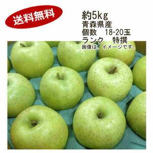 【送料無料】王林 りんご 約5kg 個数 18-20玉 ランク 特撰★一部、北海道、沖縄のみ別途送料が必要となる場合があります