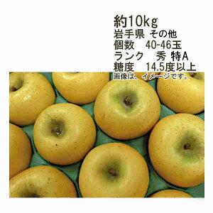 【送料無料】シナノゴールド 糖度14.5度以上 約10kg 個数 40-46玉 ランク 秀★一部、北海道、沖縄のみ別途送料が必要となる場合があります
